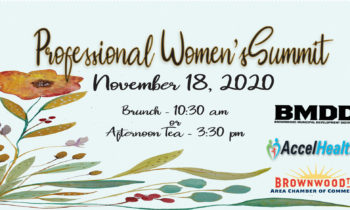 Professional Women's Summit